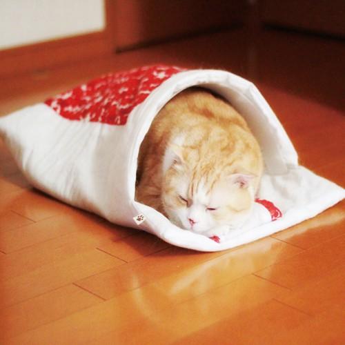 寒さ対策(*^_^*)